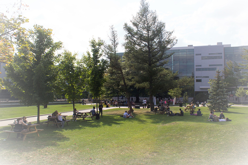 Students in the Quad at Carleton